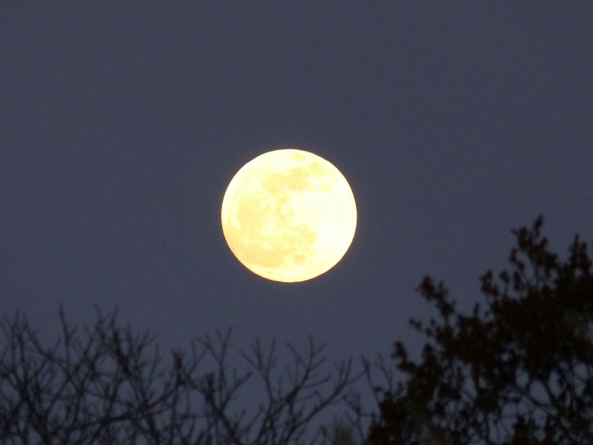 Lumière de lune