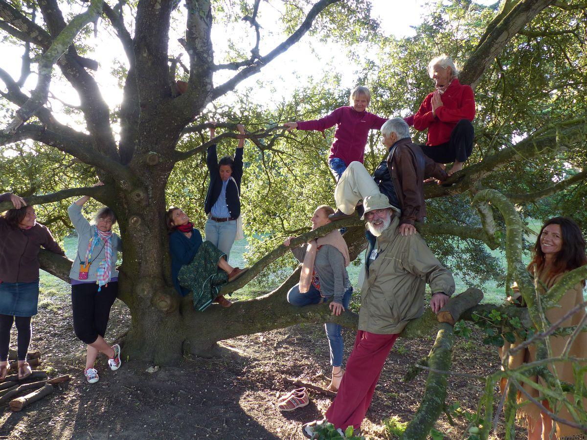 Rencontre sous l'arbre FFY